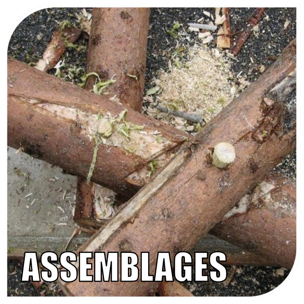 logoassemblages