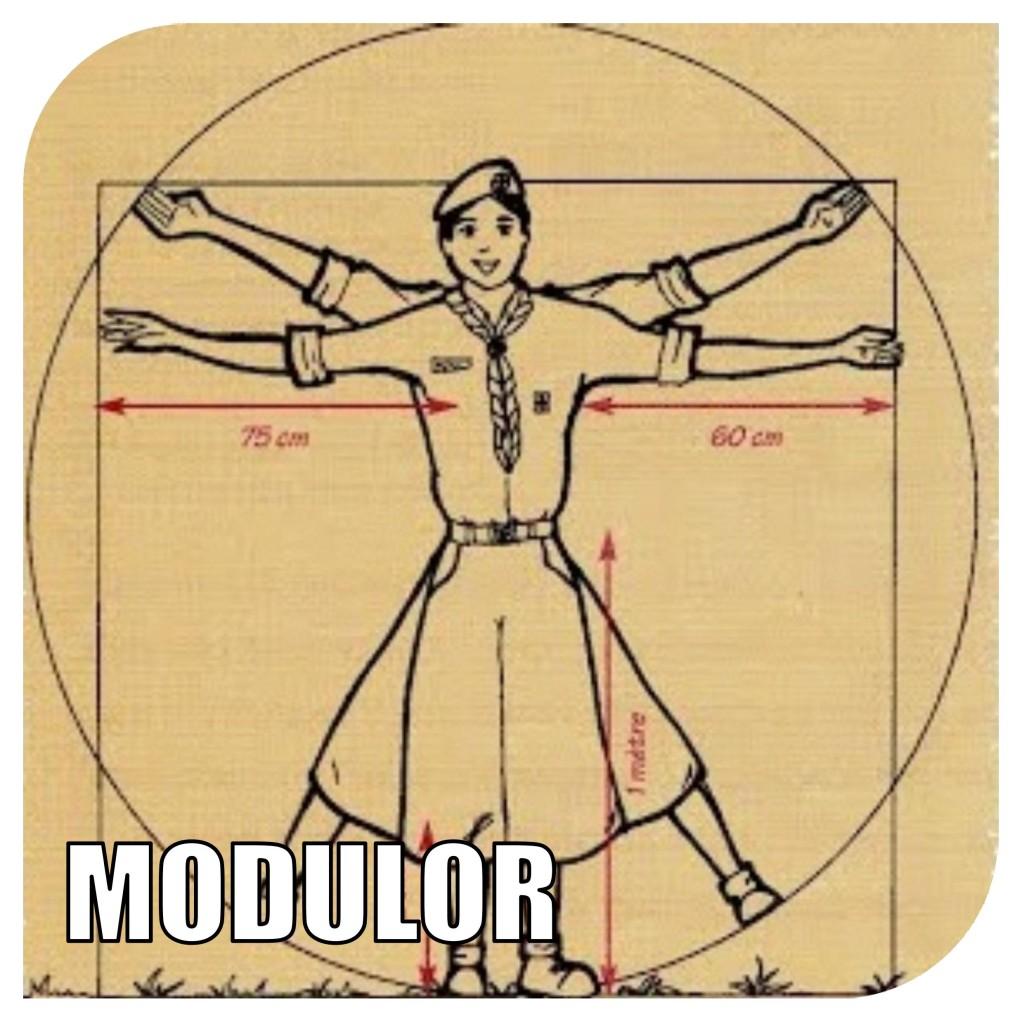 logomodulor